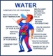 Water--it's important to your health